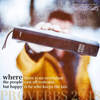 december 29 bible reading