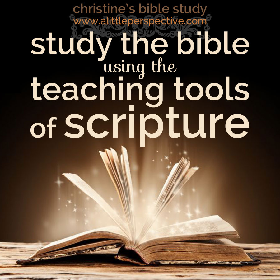 study the bible using the teaching tools of scripture | christine's bible study at alittleperspective.com