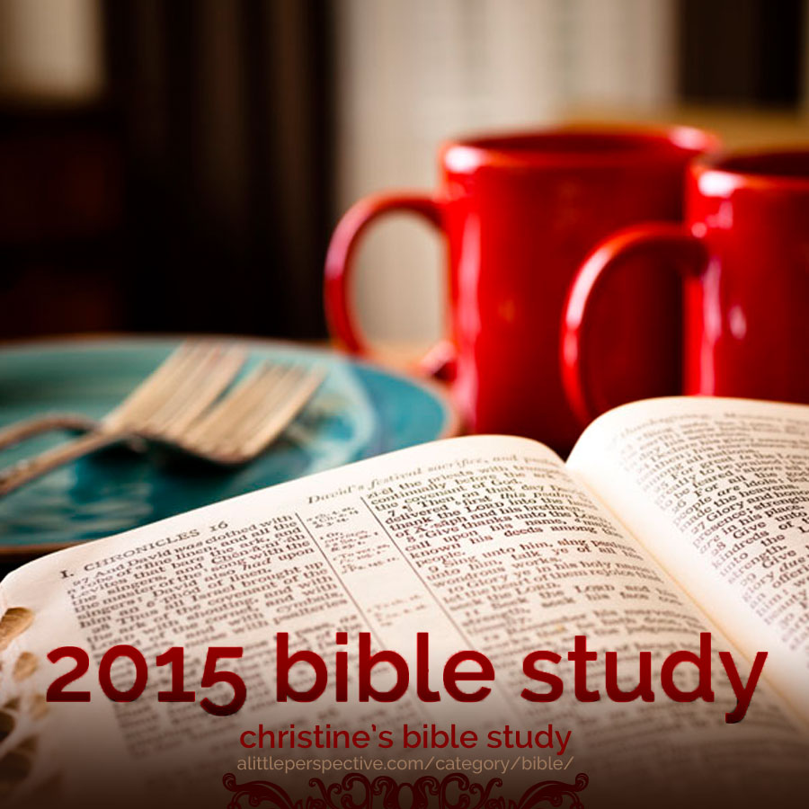 2015 bible study plan | christine's bible study at alittleperspective.com