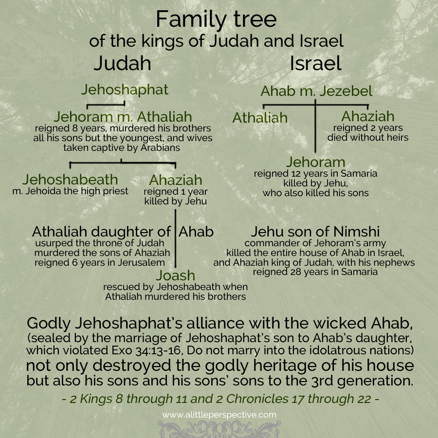 kings of judah and israel family tree | christine's bible study at alittleperspective.com