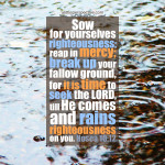 Hos 10:12 | scripture pictures at alittleperspective.com