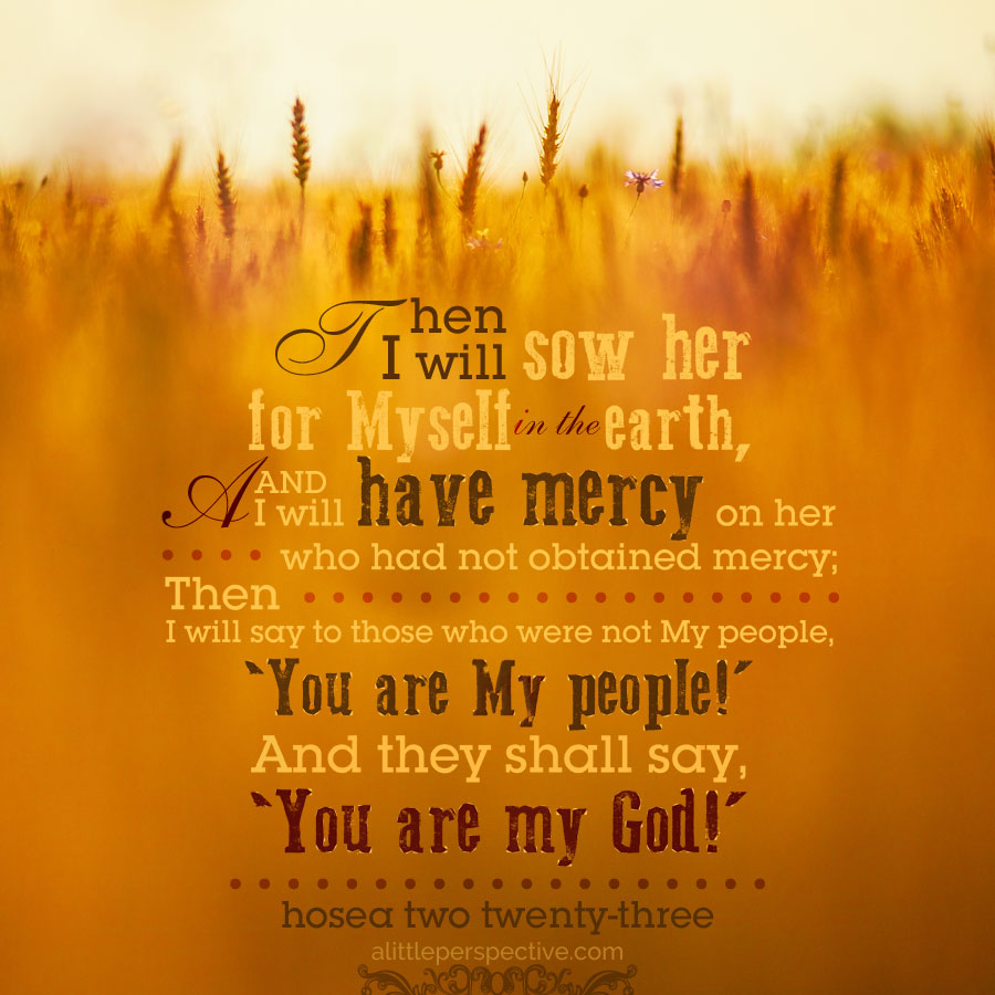Hos 2:23 | scripture pictures at alittleperspective.com