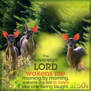 Isa 50:4 | scripture pictures at alittleperspective.com