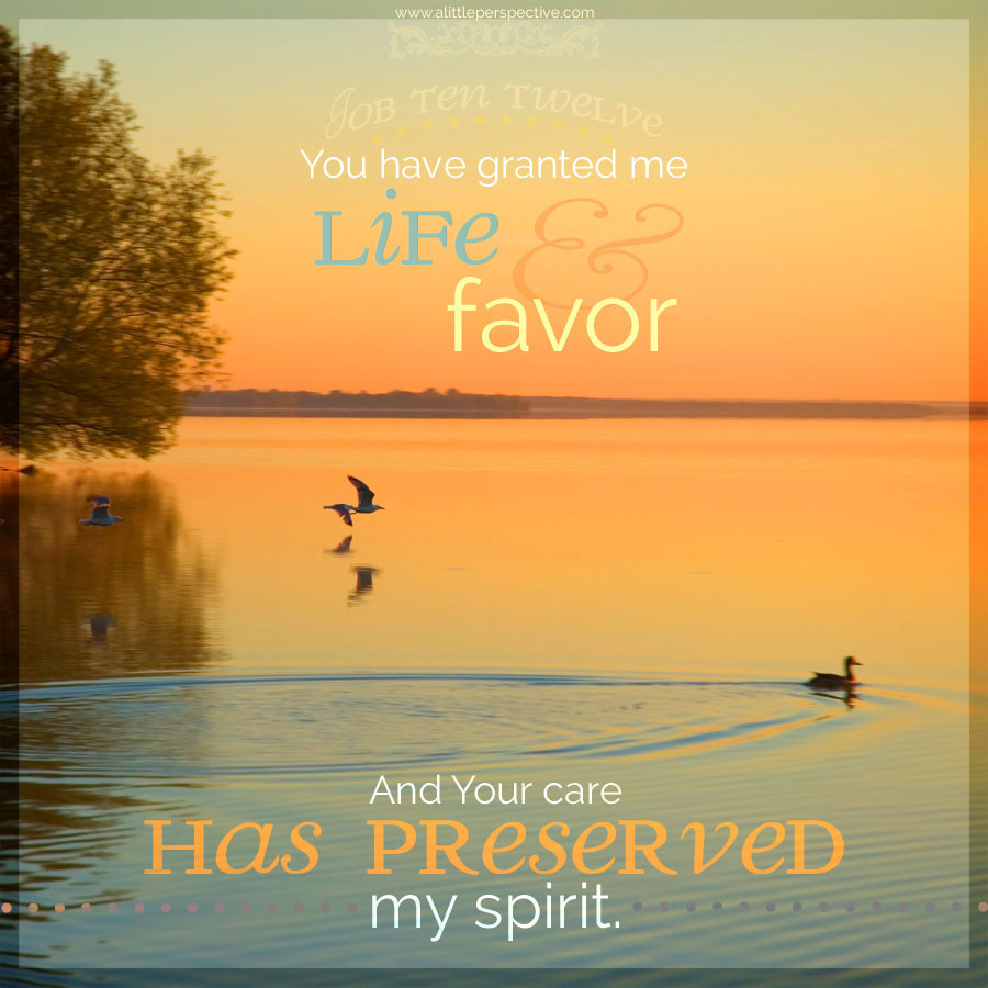 Job 10:12 | scripture pictures at alittleperspective.com