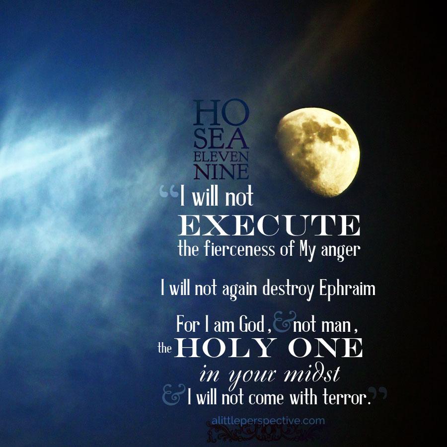 Hosea 11 And 12