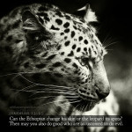 Jer 13:23 | scripture pictures at alittleperspective.com