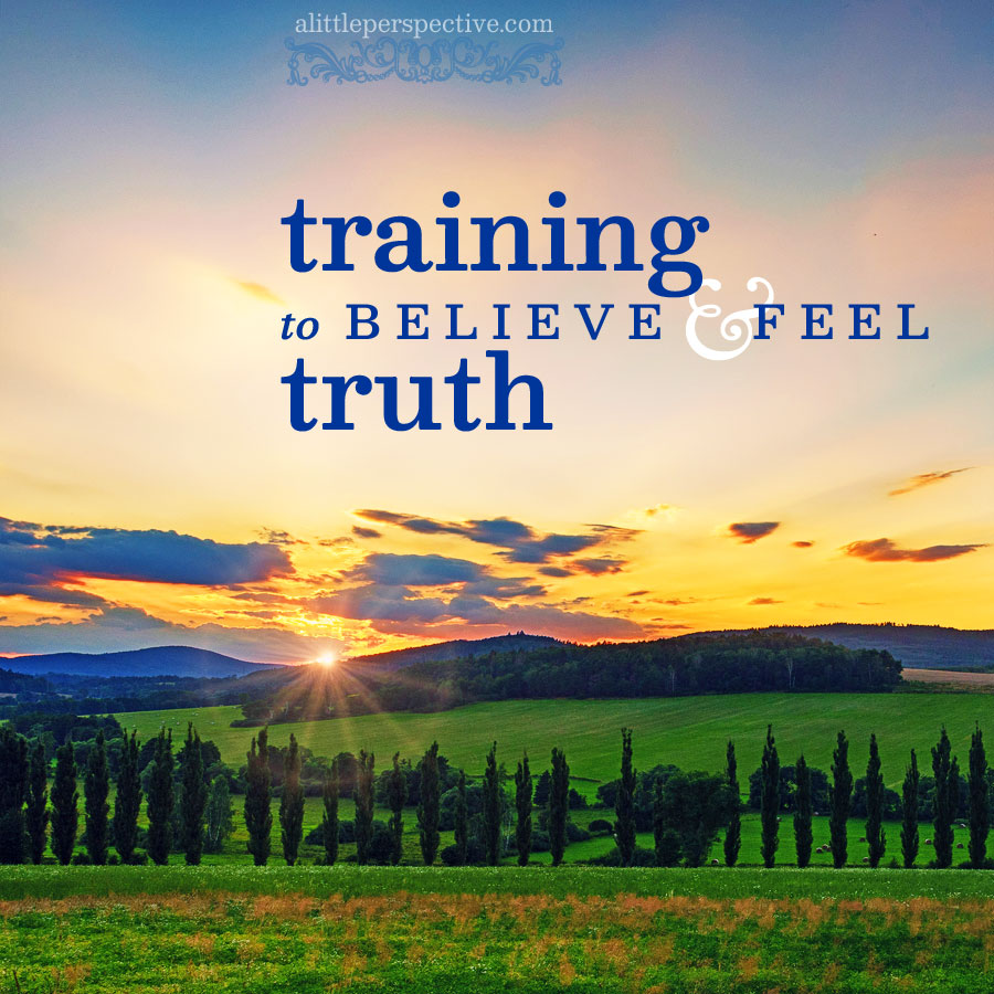 training to believe and feel the truth | alittleperspective.com