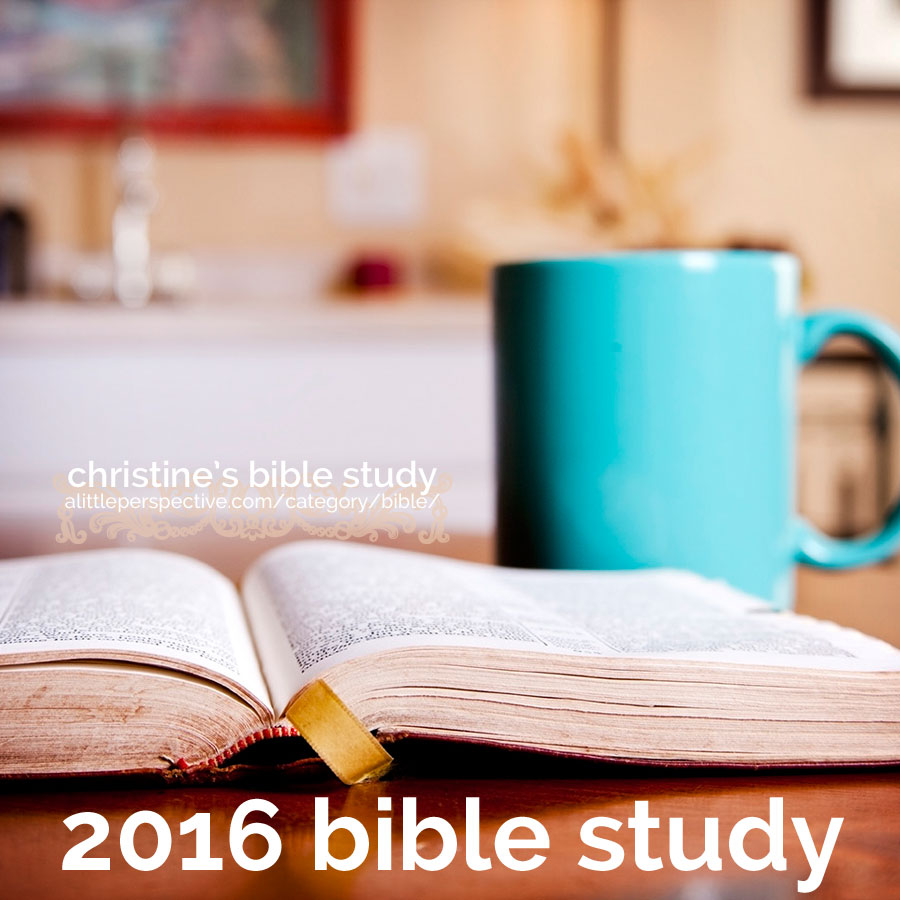 2016 bible study plans | christine's bible study at alittleperspective.com