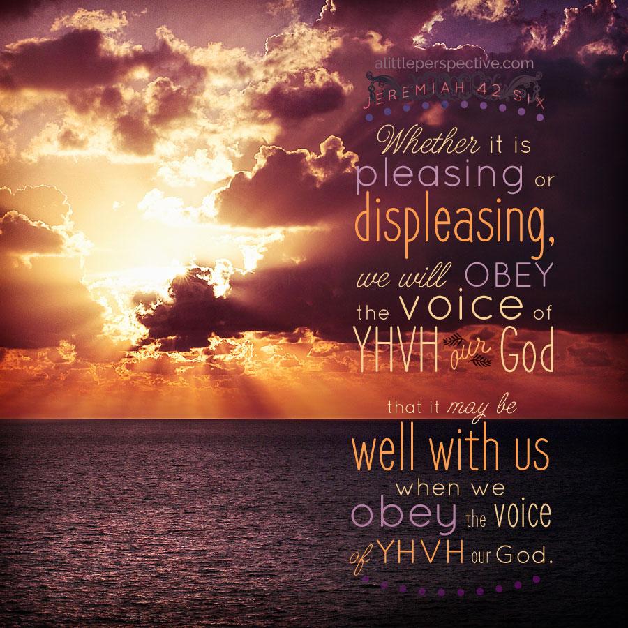 Jer 42:6 | scripture pictures at alittleperspective.com