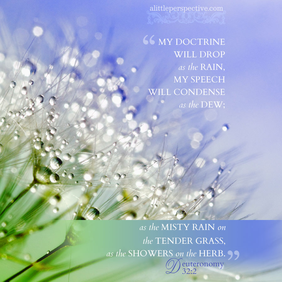 Deu 32:2 | scripture pictures at alittleperspective.com