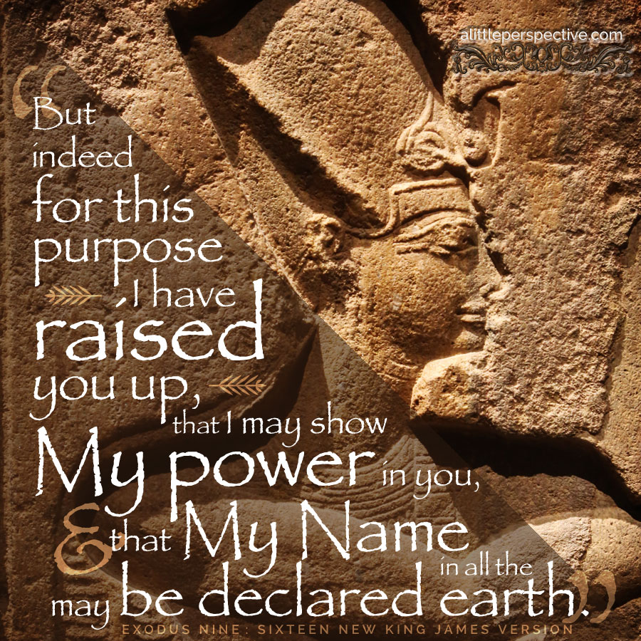 Exo 9:16 | scripture pictures at alittleperspective.com
