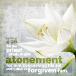 Lev 4:26 | scripture pictures at alittleperspective.com