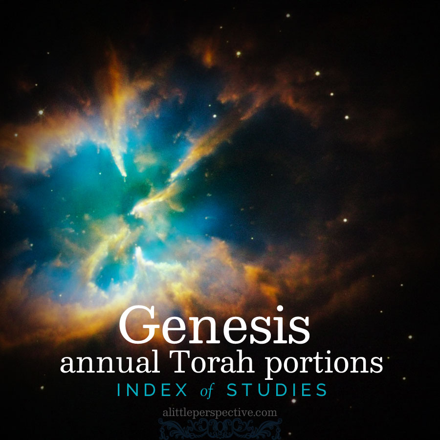 Genesis annual Torah index | christine's bible study at alittleperspective.com