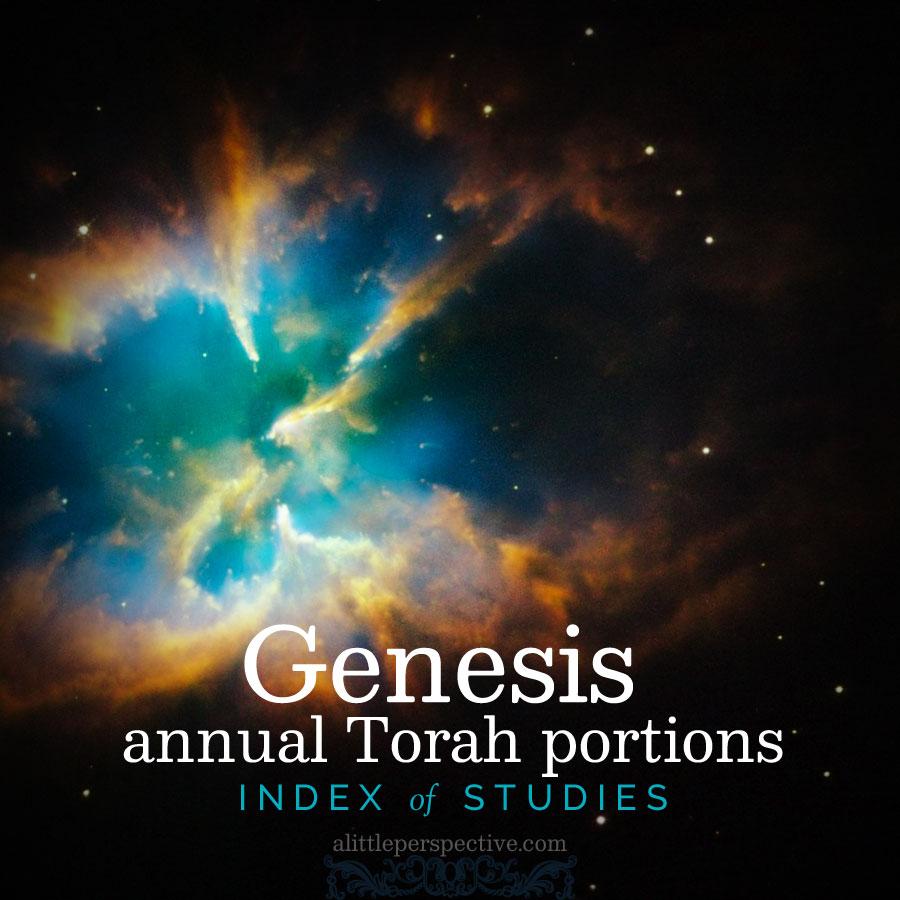 Genesis annual Torah index | christine's bible study at alittleperspective.com