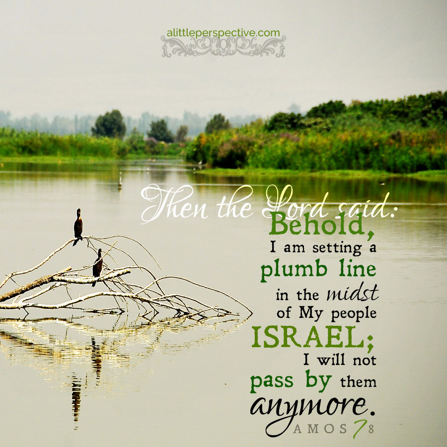 Amo 7:8 | scripture pictures at alittleperspective.com