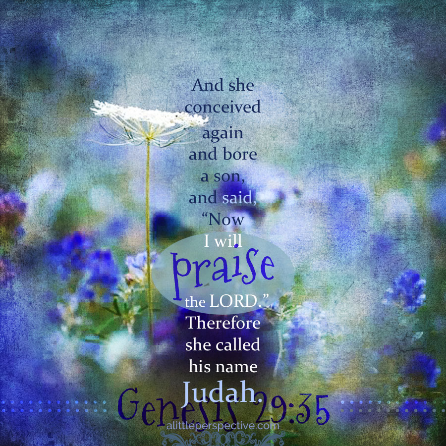 Gen 29:35 | scripture pictures at alittleperspective.com