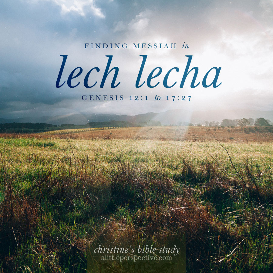 finding messiah in lech lecha, gen 12:1-17:27 | christine's bible study at alittleperspective.com
