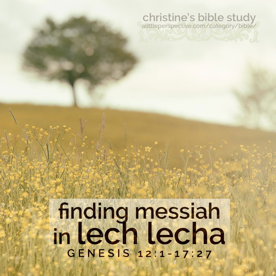finding Messiah in Lech lecha ; Gen 12:1-17:27 | christine's bible study at alittleperspective.com