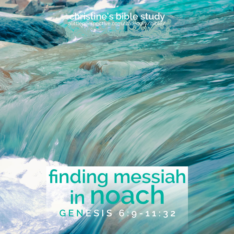 finding messiah in noach   christine's bible study at alittleperspective.com