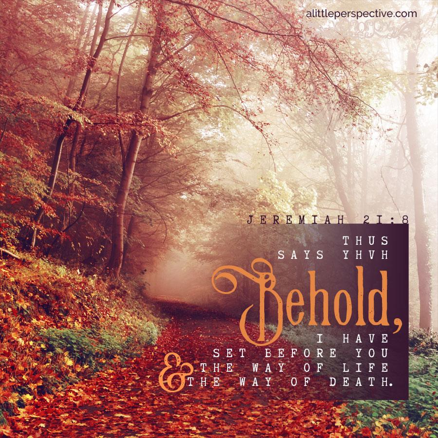 Jer 21:8 | scripture pictures at alittleperspective.com