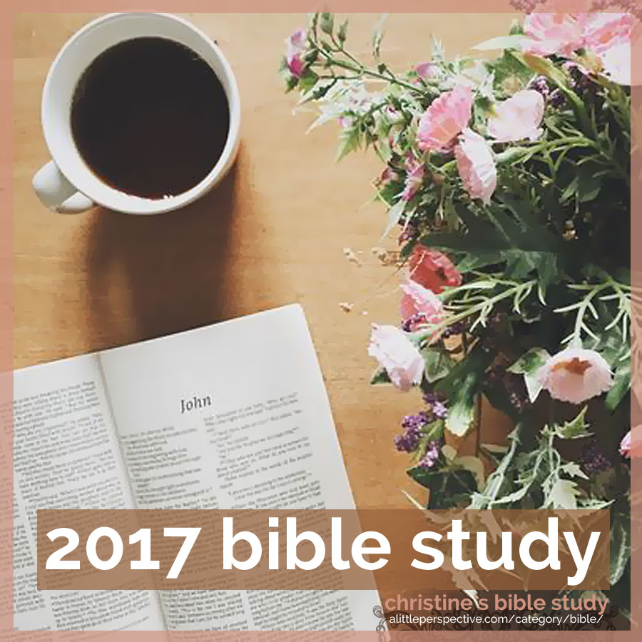2017 bible study | christine's bible study at alittleperspective.com
