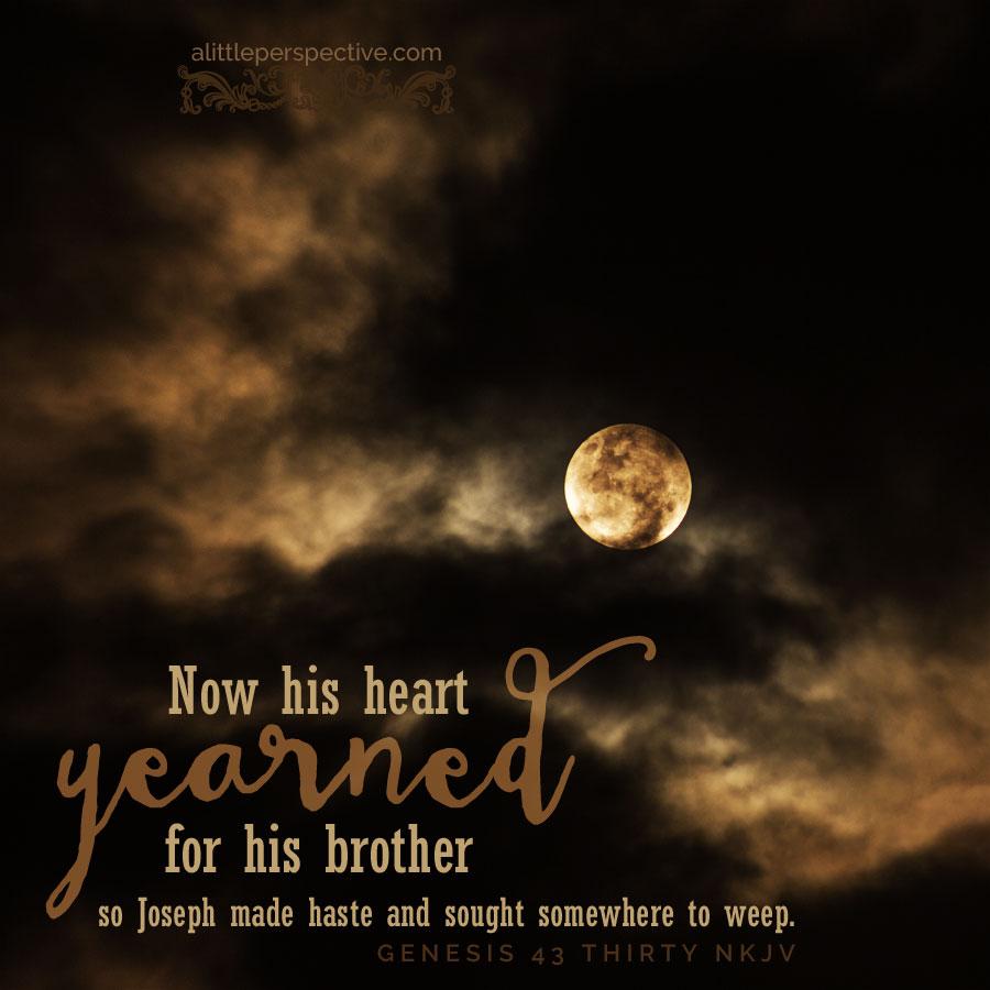 "genesis 43:24-44:17, triennial vayavei ha-ish, ""then the man brought"" outline"
