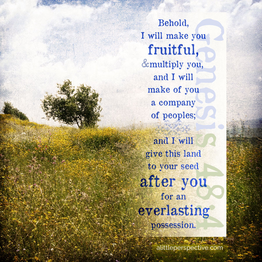 Gen 48:4 | scripture pictures at alittleperspective.com
