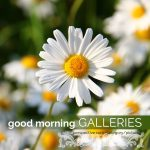 good morning galleries