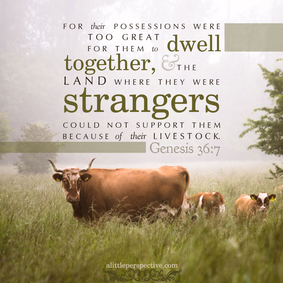 Gen 36:7 | scripture pictures at alittleperspective.com