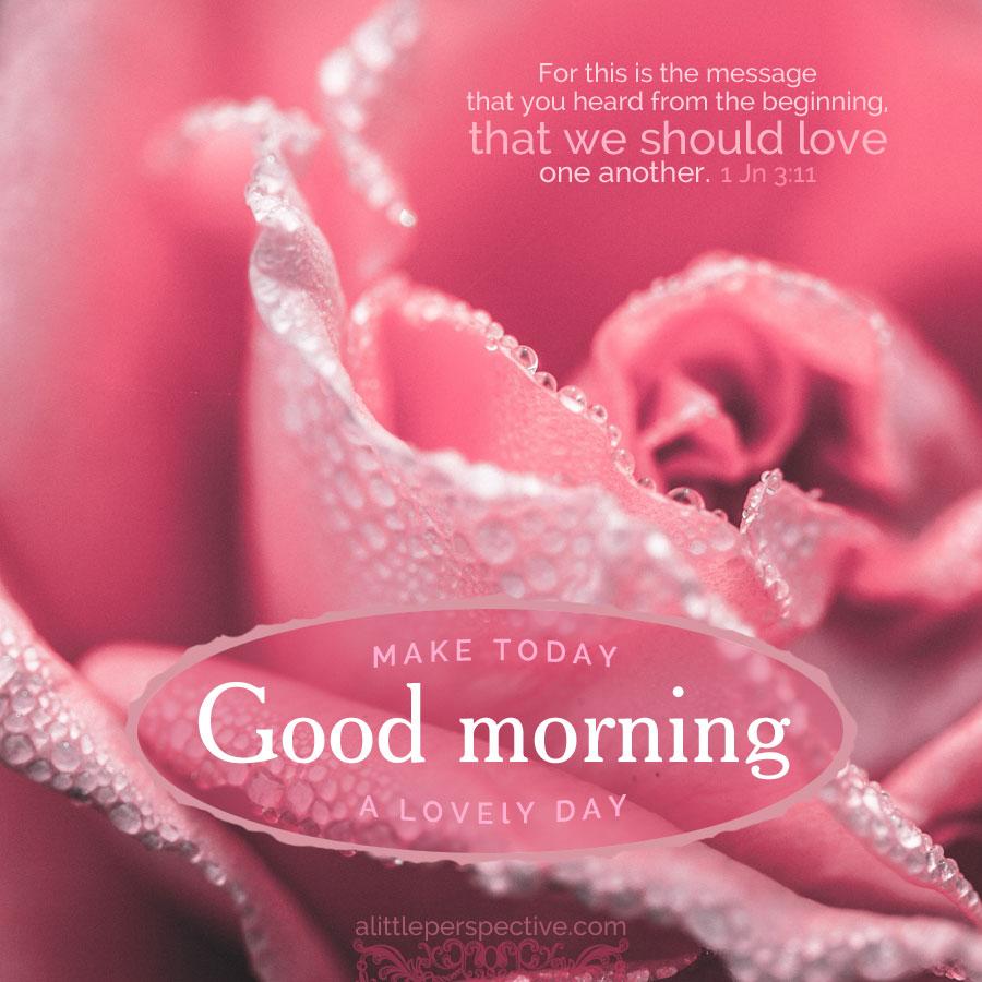 good morning pinks