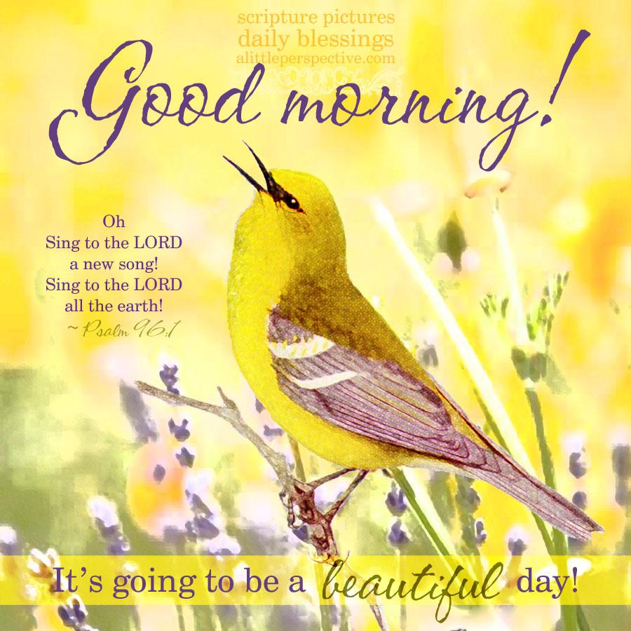 good morning yellows