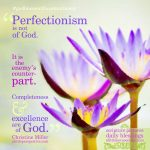 Christine Miller | godliness with contentment at alittleperspective.com