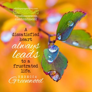 godliness with contentment | alittleperspective.com