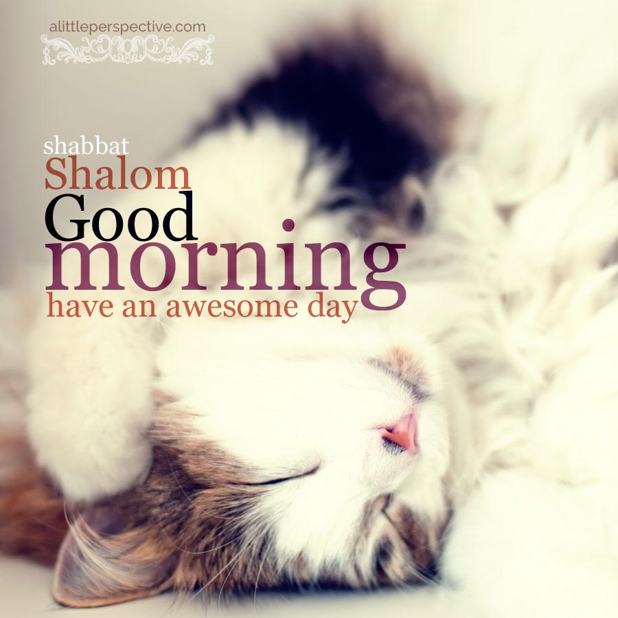 shabbat good morning