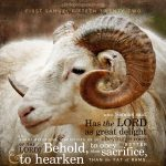 1 Sam 15:22   scripture pictures at alittleperspective.com