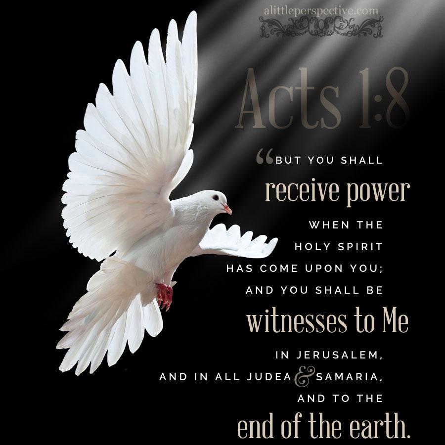 exodus 2:23-4:26, signs and wonders