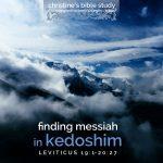 finding messiah in kedoshim