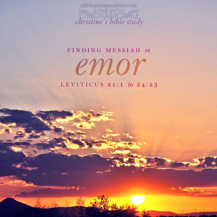 finding messiah in emor, leviticus 21:1-24:23