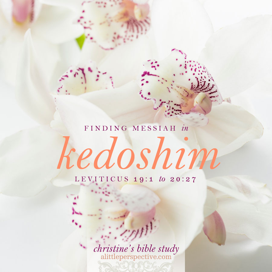 finding messiah in kedoshim, leviticus 19:1-20:27 | christine's bible study at alittleperspective.com