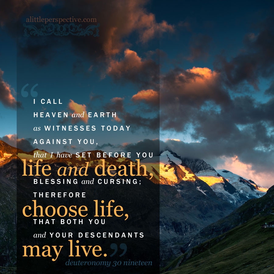 Deu 30:19 | scripture pictures at alittleperspective.com