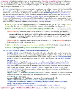 Exo 10:1-20 chiasm | christine's bible study at alittleperspective.com