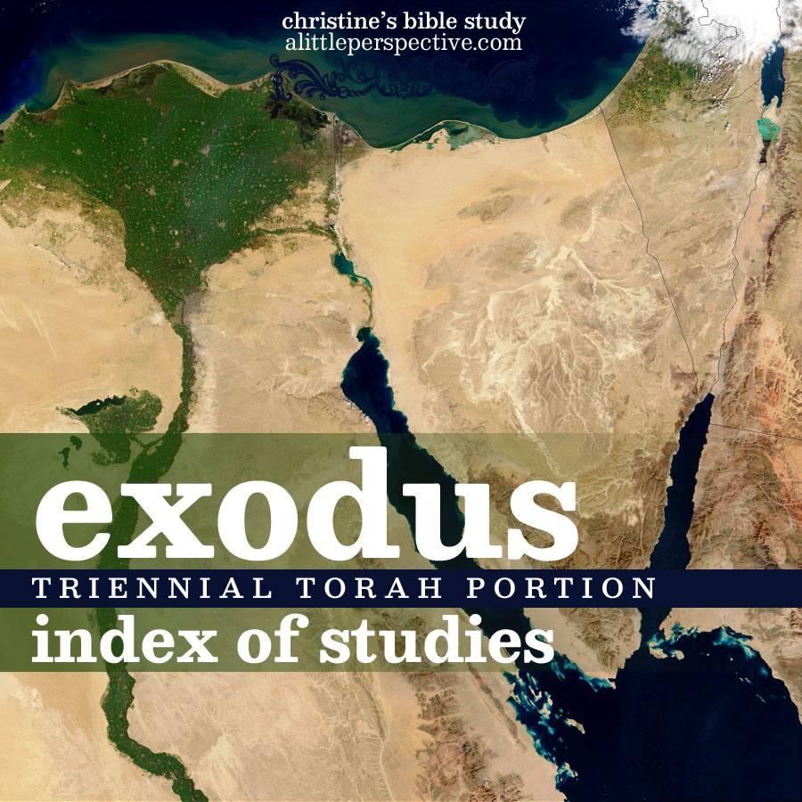 exodus triennial torah index | christine's bible study at alittleperspective.com