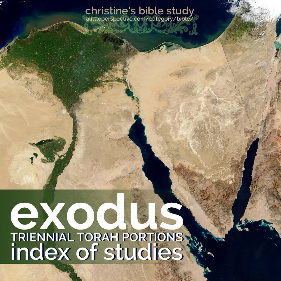 exodus triennial torah portions