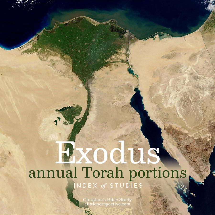 Exodus annual Torah portions index of studies | christine's bible study @ alittleperspective.com