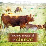 finding messiah in chukat