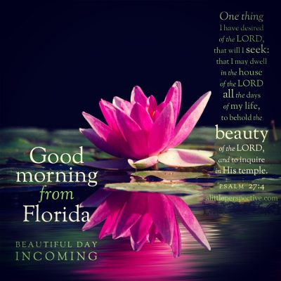 good morning from florida