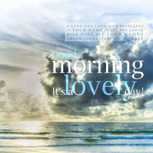 good morning from florida | daily blessings from alittleperspective.com