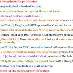 Num 19:1-22:1 chiasm   christine's bible study at alittleperspective.com