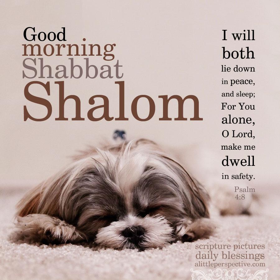 Shabbat shalom 04 good morning shabbat shalom daily blessings at alittleperspective altavistaventures Images