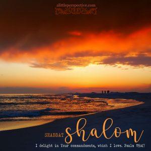 shabbat shalom | shabbat shalom gallery at alittleperspective.com